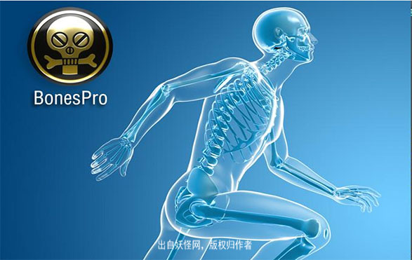 BonesPro_4.7.x_version3+汉化